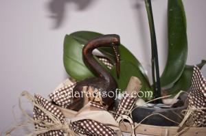 Малка дървена пластика на чапла, скрира след листата на основната част от подаръка - орхидеята